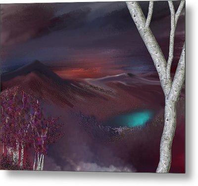 Landscape 030711 Metal Print by David Lane