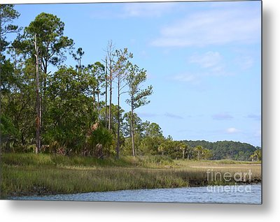 Metal Print featuring the photograph Landscape And Blue Sky by Carol  Bradley