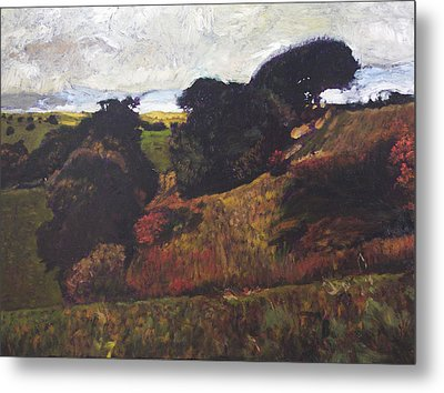 Landscape At Rhug Metal Print by Harry Robertson