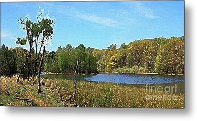 Landscape, Countryside In The Netherlands, Lakes, Meadows, Trees Metal Print
