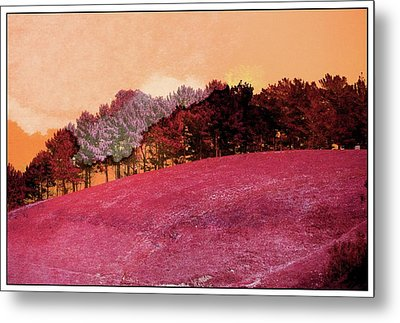 Landscape In Red Metal Print by Contemporary Art
