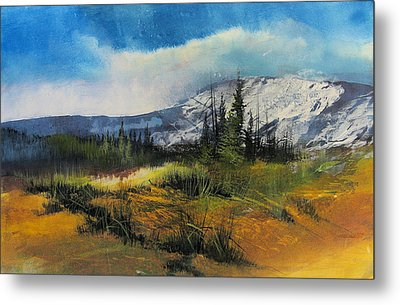 Landscape Metal Print by Robert Carver