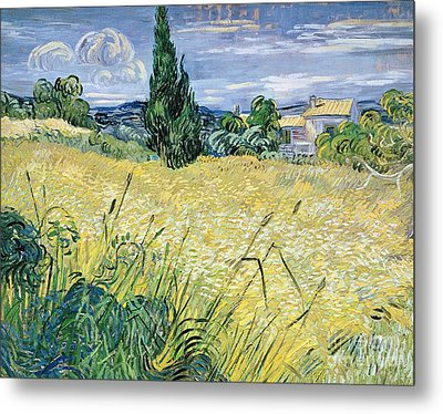 Landscape With Green Corn Metal Print by Vincent Van Gogh