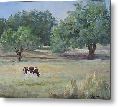 Landscape With Longhorn Metal Print