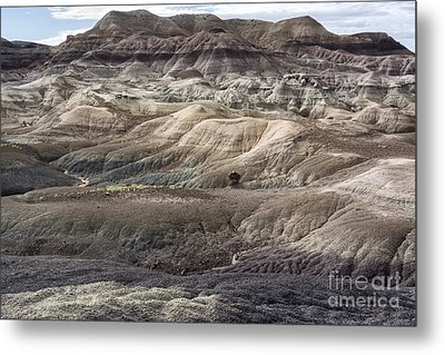 Metal Print featuring the photograph Landscape With Many Colors by Melany Sarafis