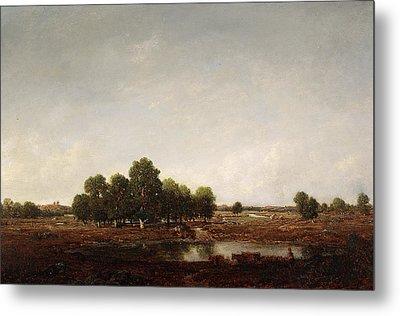 Landscape With Marsh Metal Print