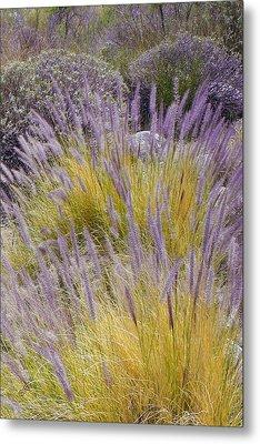 Landscape With Purple Grasses Metal Print by Ben and Raisa Gertsberg