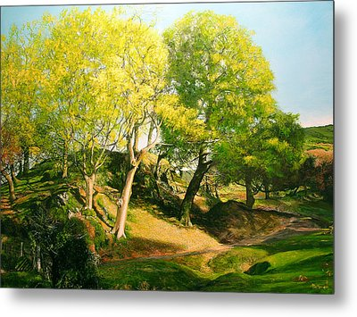 Landscape With Trees In Wales Metal Print by Harry Robertson