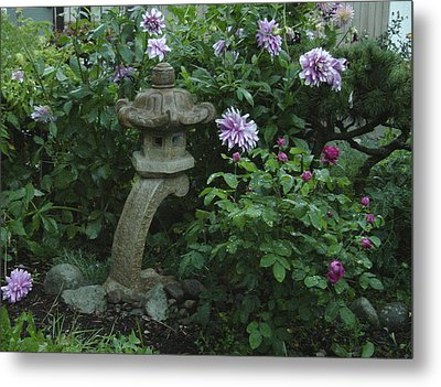 Lantern With Dahlia Metal Print by Shirley Heyn
