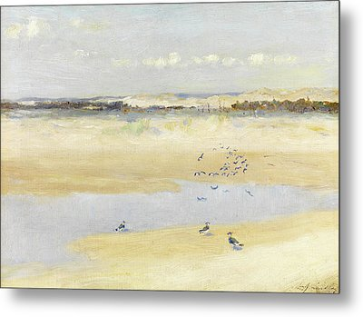 Lapwings By The Sea Metal Print by William James Laidlay