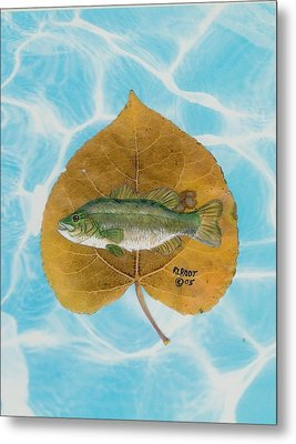 Large Mouth Bass #2 Metal Print by Ralph Root