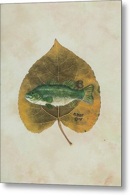 Large Mouth Bass Metal Print by Ralph Root