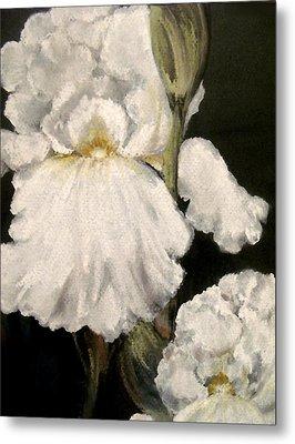 Large White Iris Metal Print by Carol Sweetwood