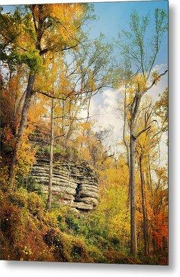 Larue Pine Hills 3 Metal Print by Marty Koch