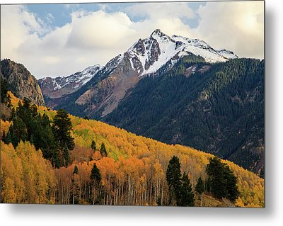 Last Light Of Autumn Metal Print by David Chandler