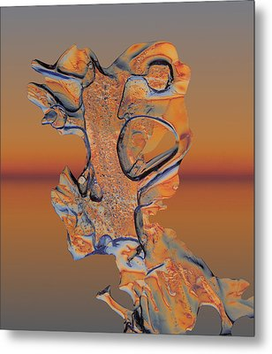 Metal Print featuring the photograph Last Look At Sunset by Sami Tiainen