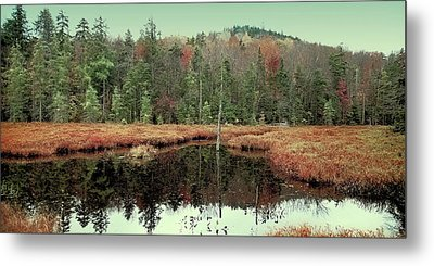 Metal Print featuring the photograph Last Of Autumn On Fly Pond by David Patterson