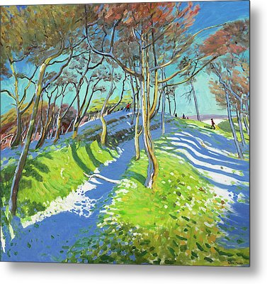 Last Of The Snow, Ladmanlow Metal Print by Andrew Macara