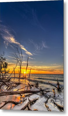 Last Stand Metal Print by Marvin Spates