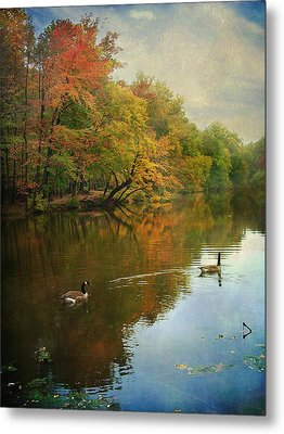 Metal Print featuring the photograph Late Afternoon by John Rivera
