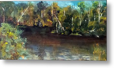 late in the Day on Blue Creek Metal Print