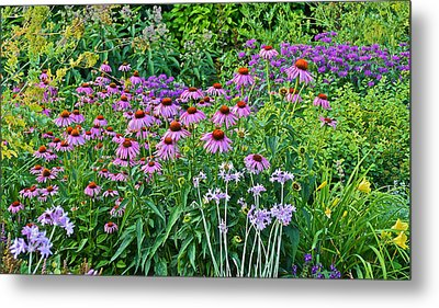 Late July Garden 2 Metal Print by Janis Nussbaum Senungetuk