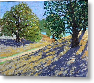 Metal Print featuring the painting Late Light's Shadows by Gary Coleman