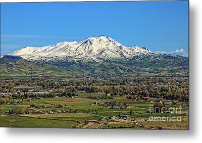 Metal Print featuring the photograph Late Spring On Squaw Butte by Robert Bales