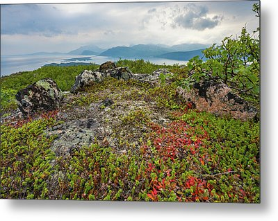 Metal Print featuring the photograph Late Summer In The North by Maciej Markiewicz