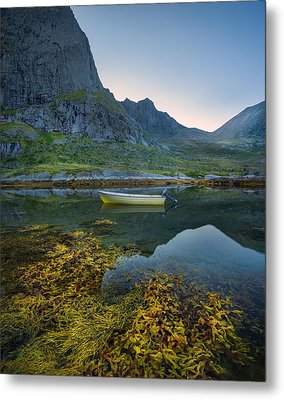 Metal Print featuring the photograph Late Summer by Maciej Markiewicz