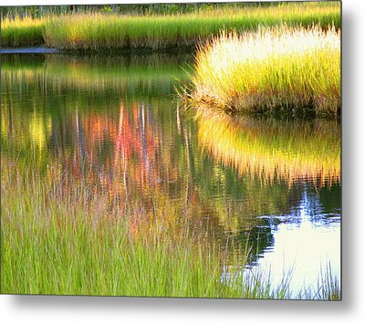 Stillness Of Late Summer Marsh  Metal Print