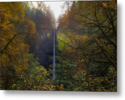 Latourell Falls In Autumn Metal Print by David Gn