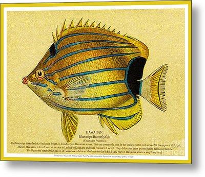 Lauhau - Bluestripe Butterflyfish Metal Print by James Temple