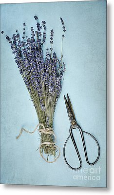 Metal Print featuring the photograph Lavender And Antique Scissors by Stephanie Frey
