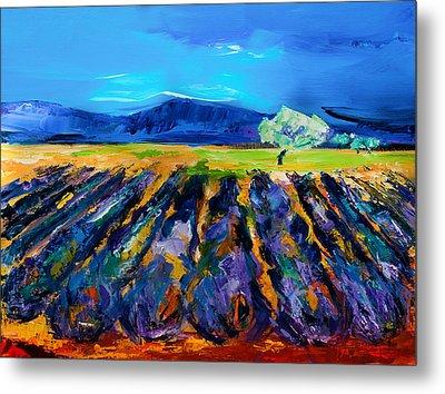 Lavender Field Metal Print by Elise Palmigiani