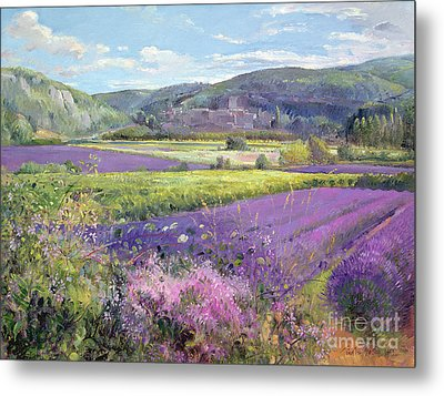 Lavender Fields In Old Provence Metal Print by Timothy Easton