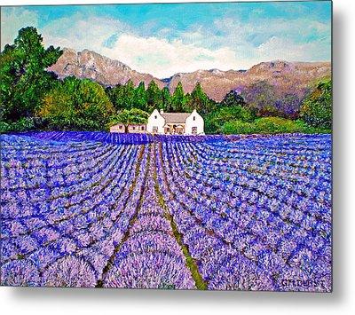 Lavender Fields Metal Print by Michael Durst