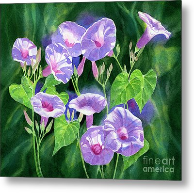 Lavender Morning Glories With Background Metal Print