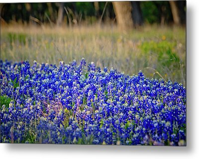 Metal Print featuring the photograph Layers Of Blue by Linda Unger