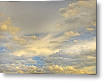 Metal Print featuring the photograph Layers by Wanda Krack