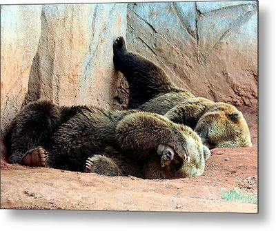 Metal Print featuring the photograph Lazy Bears by Sheila Brown