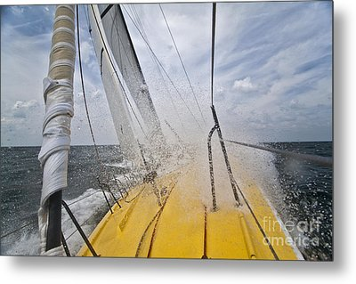 Le Pingouin Charging Upwind Metal Print by Dustin K Ryan