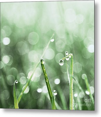 Le Reveil - S02f Metal Print by Variance Collections