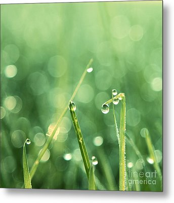 Le Reveil - S01c Metal Print by Variance Collections