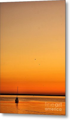 Metal Print featuring the photograph Le Voyage 02 by Aimelle