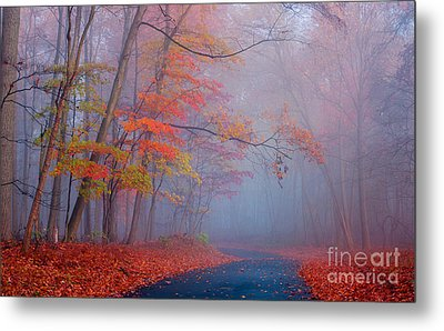 Journey Metal Print by Rima Biswas