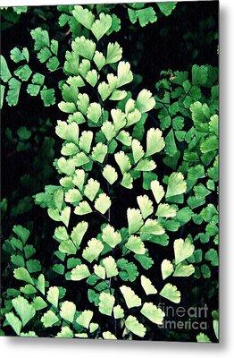 Leaf Abstract 15 Metal Print by Sarah Loft