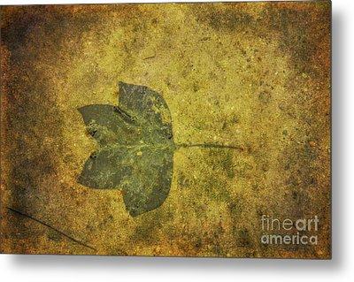 Metal Print featuring the digital art Leaf In Mud One by Randy Steele