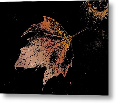 Leaf On Bricks Metal Print by Tim Allen