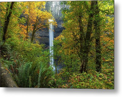 Leaf Peeping And Waterfall Metal Print by David Gn
